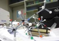 Balls-and-sticks model of Proline