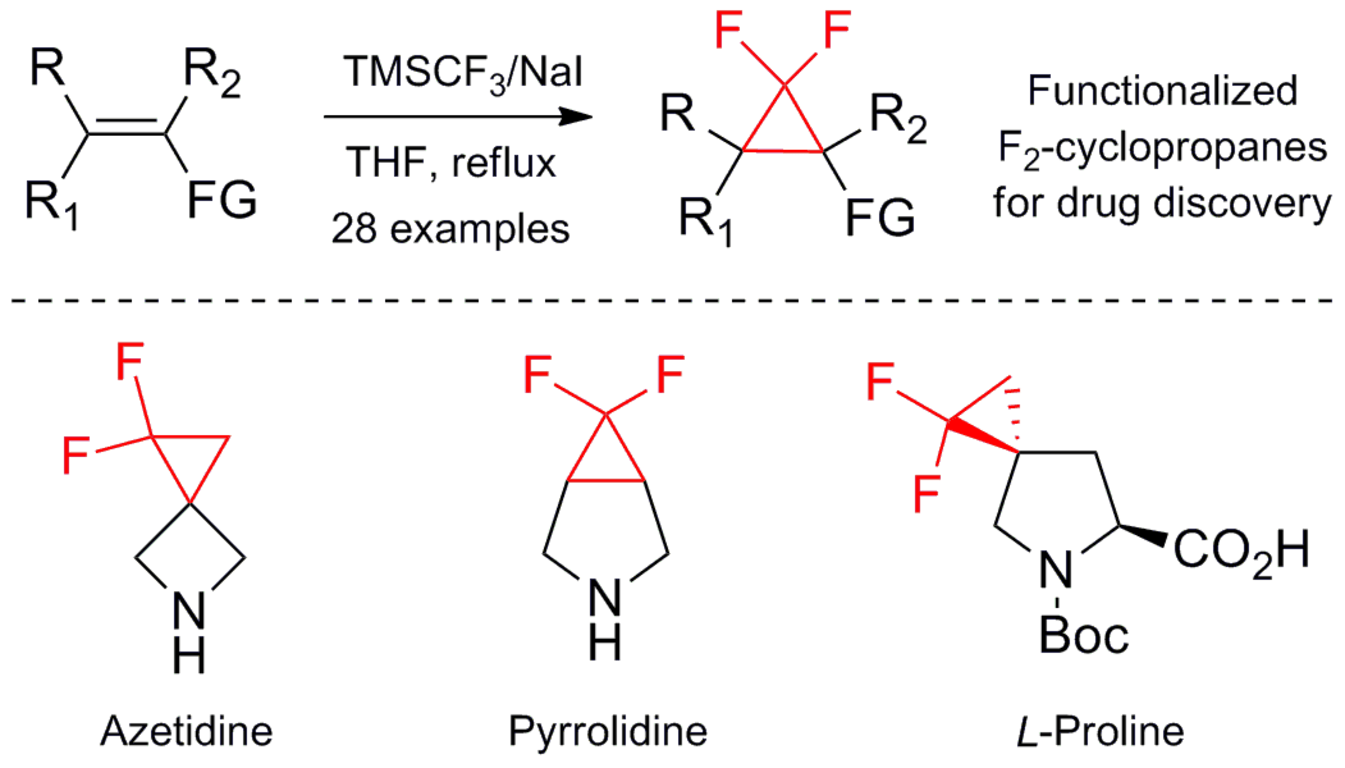 Synthesis of functionalized difluorocyclopropanes: unique building blocks for drug discovery