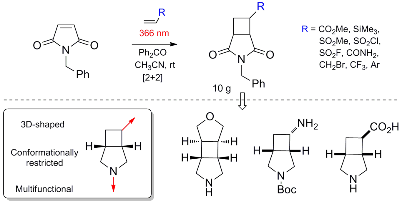 [2+2]-Photocycloaddition of N-benzylmaleimide to alkenes as an approach to functional 3 azabicyclo[3.2.0]heptanes