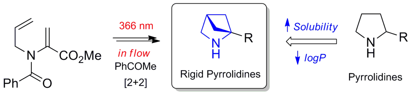 Photochemical In-Flow Synthesis of 2,4-Methanopyrrolidines: Pyrrolidine Analogues with Improved Water Solubility and Reduced Lipophilicity