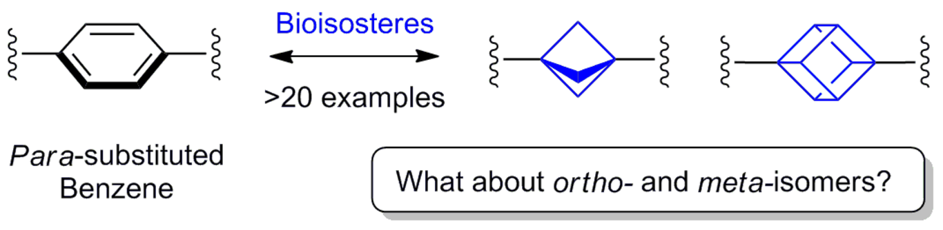 Saturated Bioisosteres of Benzene: Where to go Next?