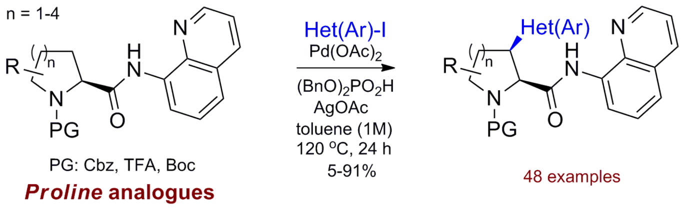 CH-Activation of Proline analogues