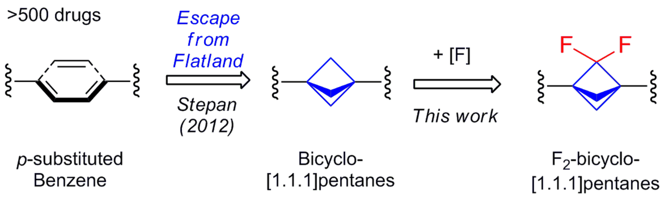 Difluoro-Substituted bicyclo[1.1.1]pentanes as Novel Motifs for Medicinal Chemistry: Design, Synthesis and Characterization