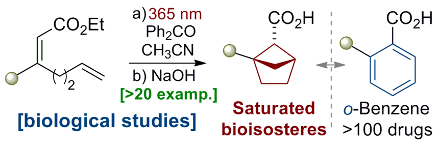 Saturated Bioisosteres of ortho‐Substituted Benzenes